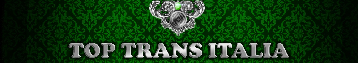 Logo ufficiale toptransitalia.it